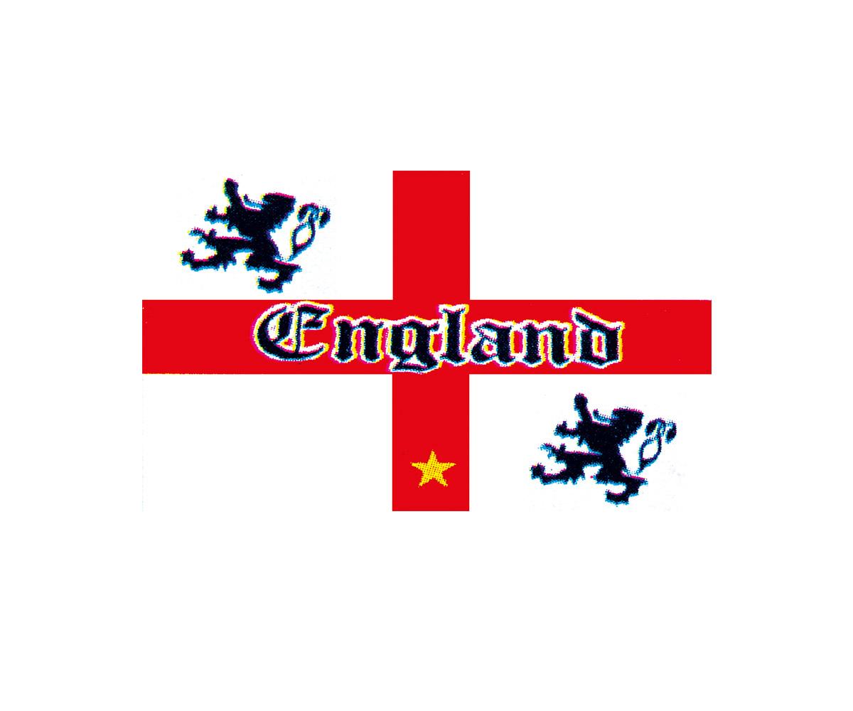Fahne 90 x 150 cm Old England mit Löwen